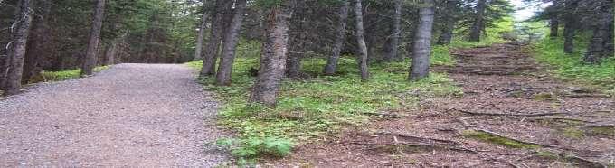 path header